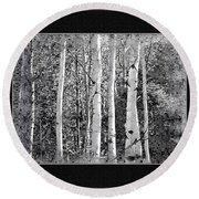 Round Beach Towel featuring the photograph Birch Trees by Susan Kinney