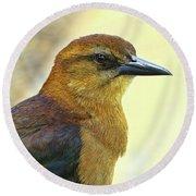 Round Beach Towel featuring the photograph Bird Beauty by Deborah Benoit