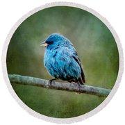 Bird In Blue Indigo Bunting Ginkelmier Inspired Round Beach Towel