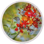 Bird In Bush Round Beach Towel