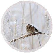 Bird In First Frost Round Beach Towel