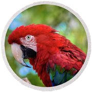 Round Beach Towel featuring the photograph Bird In Red by Lisa L Silva