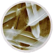 Bird-less Of A Feather Round Beach Towel