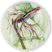 Bird Of Paradise, A Faded Beauty Round Beach Towel by Nadine Dennis