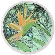 Round Beach Towel featuring the photograph Bird Of Paradise In The Hothouse by Nareeta Martin