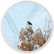 Bird On Tree Round Beach Towel by Craig Walters