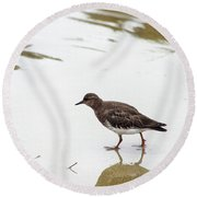 Round Beach Towel featuring the photograph Bird Walking On Beach by Mariola Bitner