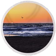 Round Beach Towel featuring the photograph Birds At Sunrise by Nicole Lloyd