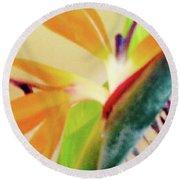 Birds Bromeliads Halyconia 2 Round Beach Towel