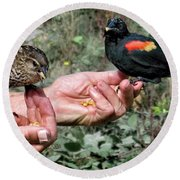Round Beach Towel featuring the photograph Birds In The Hands by Jennie Breeze
