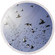 Round Beach Towel featuring the photograph Birds by Lynn Geoffroy