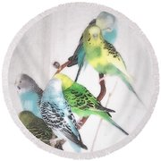 Round Beach Towel featuring the photograph Birds Of A Feather by Robin Regan