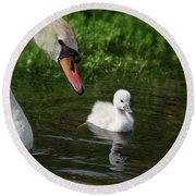 Birds Of Feather... Round Beach Towel