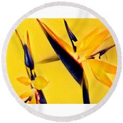 Birds Of Paradise - Two In Gold Round Beach Towel