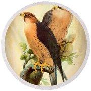 Birds Of Prey 1 Round Beach Towel