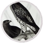 Birds Of Prey Round Beach Towel by Charles Darwin