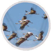 Birds Of The Same Feather. Round Beach Towel