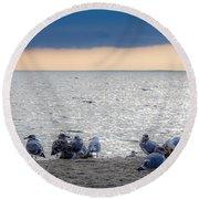 Birds On A Beach Round Beach Towel