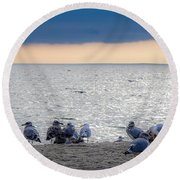 Round Beach Towel featuring the photograph Birds On A Beach by Kendall McKernon