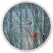 Birds On A Snowy Day Round Beach Towel
