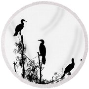 Birds Perched On Branches Round Beach Towel
