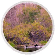 Round Beach Towel featuring the photograph Birds Playing In The Pond 2 by Madeline Ellis