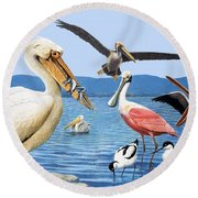 Birds With Strange Beaks Round Beach Towel