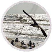 Birds World Round Beach Towel