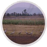 Birds2 Round Beach Towel