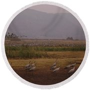 Birds3 Round Beach Towel