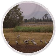 Birds5 Round Beach Towel