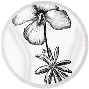 Birdsfoot Violet Round Beach Towel
