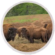 Bison 2 Round Beach Towel