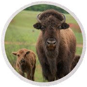 Bison 4 Round Beach Towel