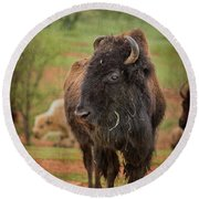 Bison 5 Round Beach Towel