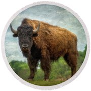 Bison 9 Round Beach Towel