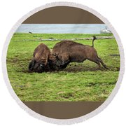Bison Fighting Round Beach Towel