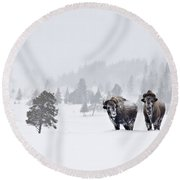 Bison In The Snow Round Beach Towel