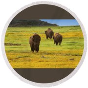 Bison In Wildflowers Round Beach Towel
