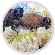 Bison Pair Round Beach Towel