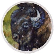 Bison Study 5 Round Beach Towel