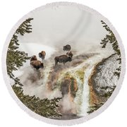 Round Beach Towel featuring the photograph Bison Taking A Steam Bath by Sue Smith