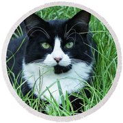 Black And White Cat With Green Eyes Round Beach Towel