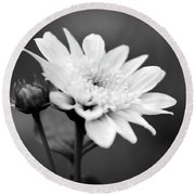 Round Beach Towel featuring the photograph Black And White Coreopsis Flower by Christina Rollo