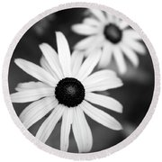 Round Beach Towel featuring the photograph Black And White Daisies by Christina Rollo