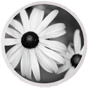 Round Beach Towel featuring the photograph Black And White Daisy by Christina Rollo