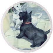 Black And White Dogs Round Beach Towel