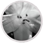Black And White Easter Lily Round Beach Towel