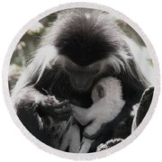 Black And White Image Of Colobus Monkeys Round Beach Towel