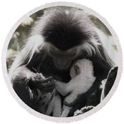 Black And White Image Of Colobus Monkeys Round Beach Towel